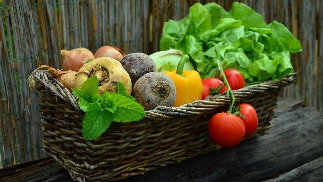 Tips Tumbuhkan Kebiasaan Anak Suka Makan Makanan Sehat