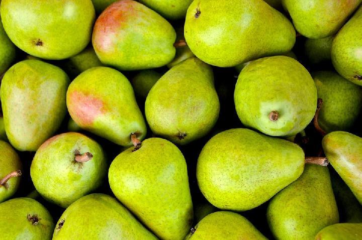 5 Alasan Buah Pir Baik untuk Diet, Kaya Serat dan Melindungi Usus