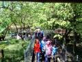Murah, Agrowisata Kebun Belimbing Ramai Pengunjung