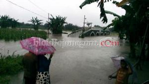 Banjir Bandang Terjang Wilayah Gondang dan Temayang