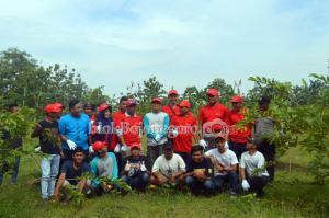 Kolaborasi Pemuda, Pemdes EMCL Wujudkan Agrowisata